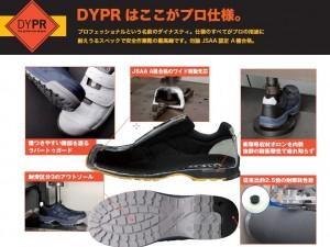 DYPR-SPEC